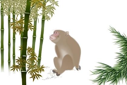 サルと竹林 イラスト