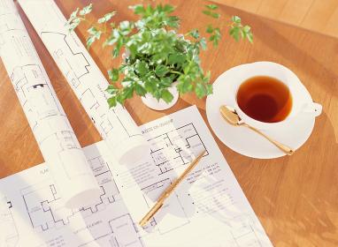 間取り図と紅茶