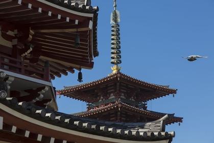 四天王寺南鐘堂と五重塔