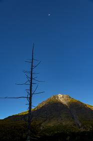 上高地大正池からの焼岳の朝