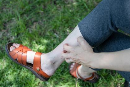 虫に刺された足をかいている女性