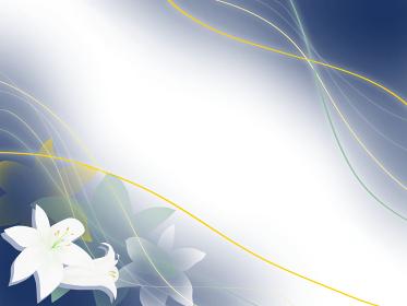 流れる線と白いゆりの花(ヨコ)
