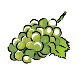 アナログタッチ筆描き水彩画 葡萄ブドウマスカットのイラスト野菜フルーツ