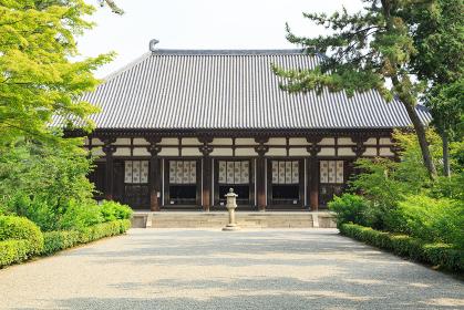 唐招提寺 (奈良県奈良市 2013/07/10撮影)