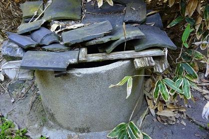 埋めた古井戸