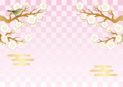 梅 うめ 花 うぐいす ウグイス 春 和柄 市松模様 背景素材 コピースペース イラスト