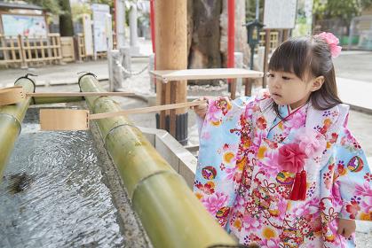 手水舎で手水を掬う七五三の日本人の女の子