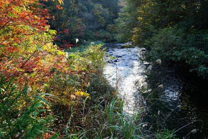 加賀温泉郷、山中温泉の鶴仙渓の景色