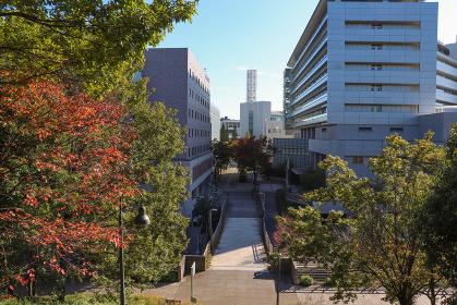 センター南の街並み(神奈川県横浜市都筑区)
