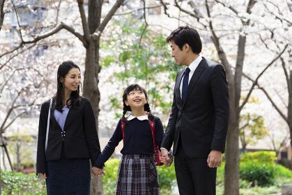 桜並木の下を歩く家族