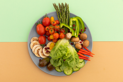 High angle view of freshly cut vegetables on grey plate. fresh vegetables vitamins healthy whole food copy space concept.