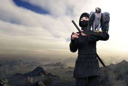 山々が密集し雲より高い場所で肩にはやぶさを乗せたくノ一が背中に忍者刀を背負い任務のため行動する