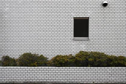壁面と生け垣