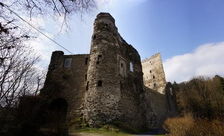 grenzau castle ruins