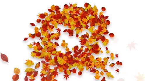 カラフルな紅葉が舞い踊るCGイラスト