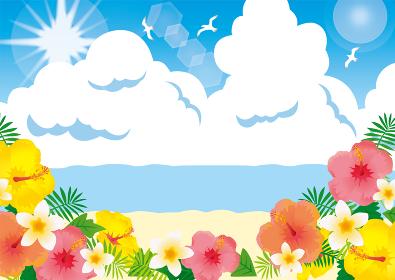 青い海とハイビスカス