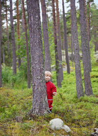 Toddler hiding behind tree in forest