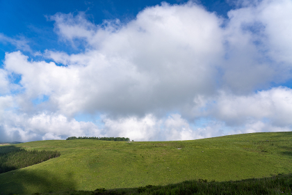 夏の車山高原