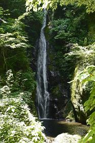 大滝 (あきる野市)