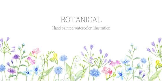 水彩で描く花