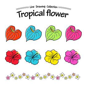 夏の花・熱帯植物 手描きアイコンセット