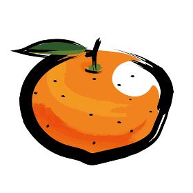 アナログタッチ筆描き水彩画 蜜柑ミカンのイラスト野菜フルーツ