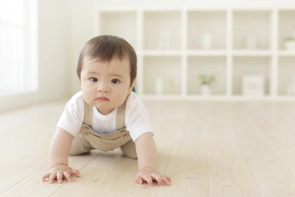 リビングでハイハイするハーフの赤ちゃん