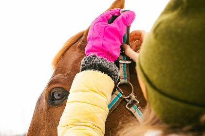 Woman in winter clothes and the horse to stand together against the white snow. love and care for horses. girl puts a bridle on a horse