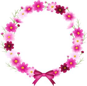 ピンクのグラデーションのコスモスの丸フレーム、リボン付きリース、秋イメージ
