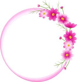 ピンクのグラデーションのコスモスの丸フレーム、リース、水彩ピンク、秋イメージ
