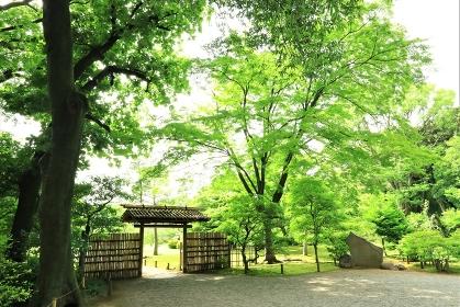 門のある風景
