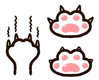 猫の肉球と爪