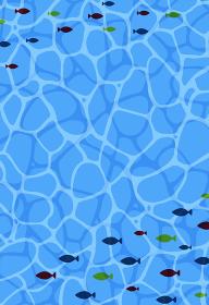 暑中見舞い 海と魚の群れ