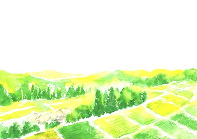 水彩で描いた田舎の風景