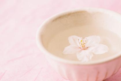 桜と和風イメージ
