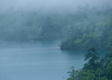 霧に包まれたオコタンペ湖