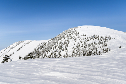 冬の会津駒ヶ岳