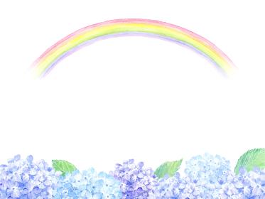 虹とあじさい 水彩イラスト