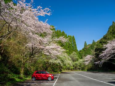 快晴の千葉県大多喜町の大多喜城駐車場 3月