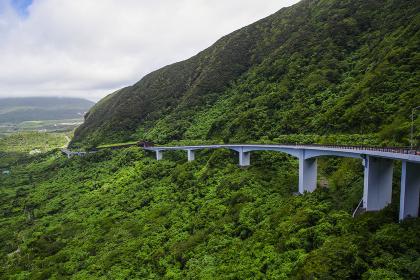 大坂トンネル展望台から見る道路橋