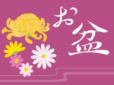 お盆の背景イラスト 菊と灯ろう