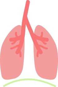 シンプルな肺と横隔膜のイラスト 内臓 / 消化器