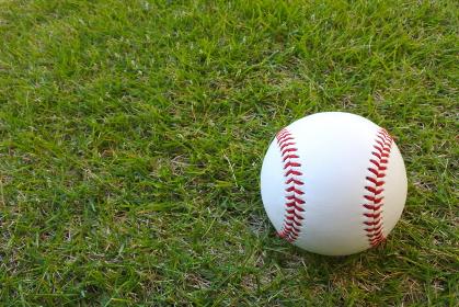 野球ボール(硬式球)