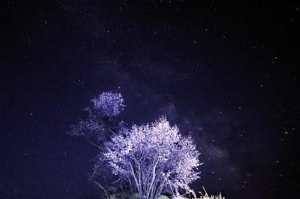 樽口峠の夜
