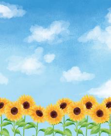 ひまわり ヒマワリ 向日葵 青空 枠 フレーム ひまわり畑 夏 花 イラスト 手描き