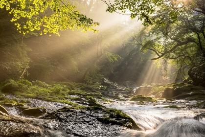 熊本県 菊池渓谷の光芒