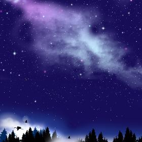 星空が広がる夜の森