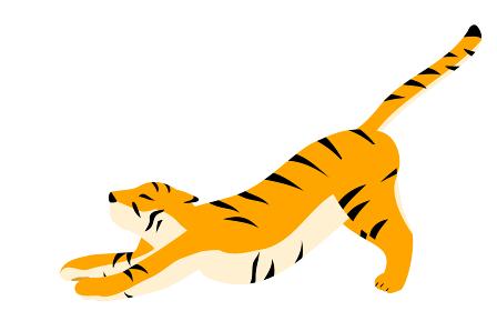シンプルな虎のポーズイラスト、伸びをしてい