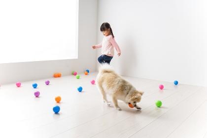 犬と一緒に遊ぶ子ども
