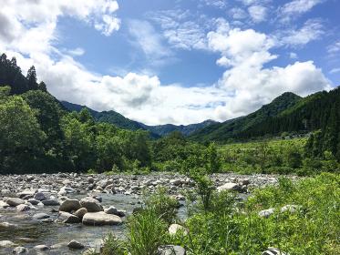 長野県魚野川の渓流で釣りをする人